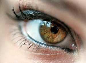 характеристика глаз