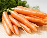 свойства морковки