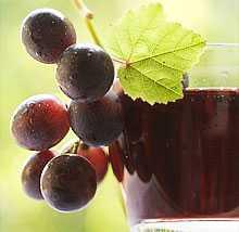 виноградный сок состав